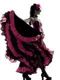 跳舞法国康康舞的妇女舞蹈演员 库存照片