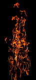 跳舞火火焰 库存照片