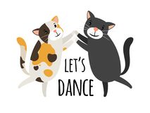 跳舞猫 跳狐步舞或探戈猫舞蹈家传染媒介例证,让舞蹈文本 免版税库存照片