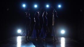 跳舞现代的芭蕾舞剧的四位老练的迷人的芭蕾舞女演员的慢动作 股票录像
