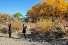 跳舞的夫人在杨属euphratica森林里在沙漠 库存图片