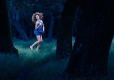 跳舞的神仙的森林森林 库存图片