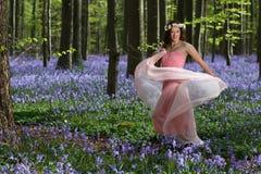 跳舞神仙在会开蓝色钟形花的草森林里 图库摄影