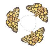 跳舞no.8的蝴蝶 库存图片