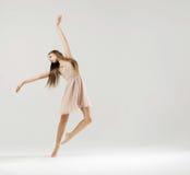 跳芭蕾舞者执行的艺术舞蹈 库存图片