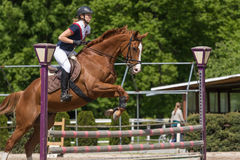 跳跃一匹棕色马的女骑士侧视图 免版税库存照片