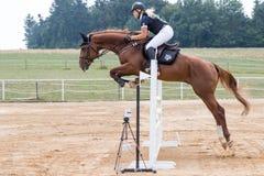 跳跃一匹棕色马的长发白肤金发的女骑士 免版税库存照片