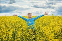 跳跃为在一个草甸的喜悦的小男孩在一个晴天 免版税库存照片