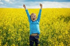 跳跃为在一个草甸的喜悦的小男孩在一个晴天 库存照片