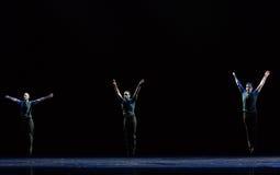 跳跃各种各样的州古典芭蕾` Austen汇集` 库存图片