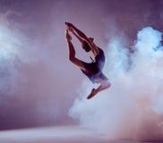 跳跃在丁香的美丽的年轻跳芭蕾舞者 免版税库存照片
