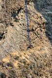 跳跃在俄勒冈的橡皮筋 库存照片