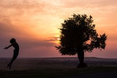 跳跃在日落光的一个美丽的女孩的剪影在树附近 免版税库存图片