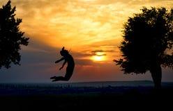 跳跃在日落的一个美丽的女孩的剪影 免版税库存照片