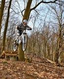 跳跃在自行车 库存图片