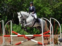 跳跃在路轨的骑马女孩一匹马 免版税图库摄影
