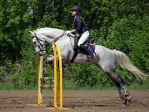 跳跃在路轨的骑马女孩一匹马 免版税库存照片