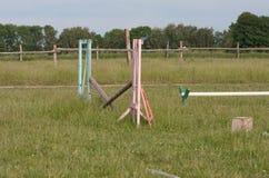 跳跃的木障碍在草甸的一匹马在夏日 免版税库存照片