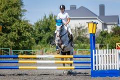 跳马球车手的驯马骑马马马现出轮廓体育运动向量 跳过障碍的女孩 免版税图库摄影
