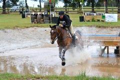 跳马球车手的驯马骑马马马现出轮廓体育运动向量 图库摄影