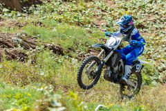 跳高的摩托车越野赛 免版税库存照片