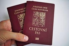 踌躇捷克护照的男性手作为国际性组织旅行和欧洲citiz的个人证明的标志 免版税库存图片