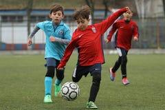 踢橄榄球或足球的小孩 库存照片