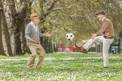 踢橄榄球的两个快乐的前辈在公园 免版税图库摄影