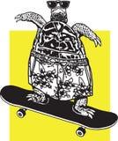 踩滑板的乌龟 库存照片