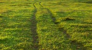 踪影轮子车在草甸 库存照片