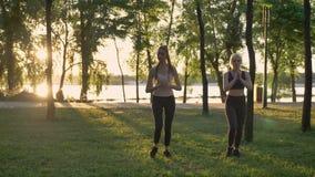 蹲在公园,减重,健身的两名年轻美丽的妇女塑造行使,美丽的景色背景 股票视频