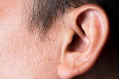 身体局部亚洲皮肤耳朵 库存照片