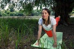 身体平衡的-少妇凝思瑜伽 免版税库存图片