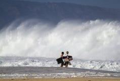 身体房客检查在奥阿胡岛北部岸的海浪  库存图片