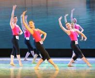 身体训练古典芭蕾基本的技巧基本的舞蹈培训班 免版税库存照片