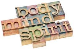 身体,头脑,在木类型的精神概念 免版税库存图片