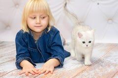 躺下和观看小猫的女孩 英国bre的小猫 免版税库存照片