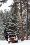 车厢的儿童等待的父母行李的 放置在有被打开的旁边和后门的车里面 冬天常青森林w 图库摄影