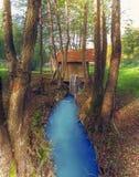 水车在有美丽的蓝色河的森林里 免版税库存图片