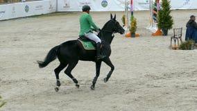 车手和马在跳跃在骑马事件的展示 股票录像