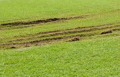 车损坏的草坪 库存照片