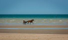 车水马龙小跑在海滩 免版税库存照片