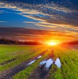 车轮痕迹横跨干草原的土路在日落天空背景的雨以后 免版税库存图片