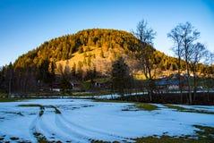 车轮的踪影在雪的 免版税库存照片