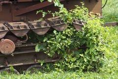 轨道和杂草 库存照片