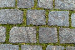 轨道在公园庭院标示用在块之间的自然石头 免版税库存图片