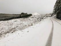 轨道在积雪的山路 库存照片