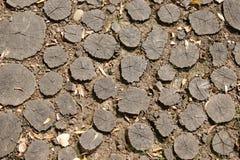 轨道标示用许多树桩 免版税库存照片