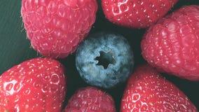 转动在关闭的新鲜的莓果  股票视频