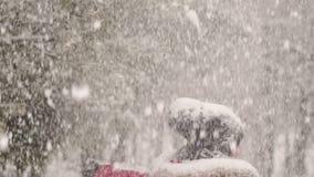 转动在大雪下的愉快的女孩在公园 股票视频